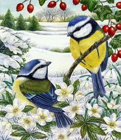 """""""Christmas Visitors X"""" by Anne Mortimer Decoupage, Clipart Noel, Illustration Noel, Christmas Bird, Winter Painting, Christmas Paintings, All Birds, Bear Art, Bird Pictures"""