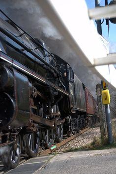 /by 毛 猪 #flickr #steam #engine