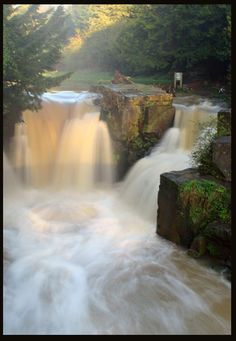 Jesmond Waterfall - Newcastle upon Tyne, Northumberland, UK  My mother used to picnic there with her family, she loved the famous bluebell walks in spring