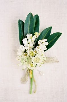David's boutonniere will be olive leaves, dusty miller, and white waxflowers wrapped in charcoal gray ribbon with the stems showing.