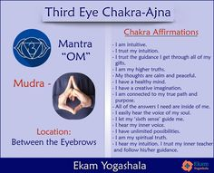 """The third eye chakra or the ajna chakra is located between the eyebrows. This chakra is responsible for tapping into your intuition and higher self. Repeat these affirmations everyday with, and the """"OM"""" mantra in the mudra given below to awaken the third eye chakra.  #yoga #kundalini #yogateacher #awaken #ajna #om #mantra #chakra #energy #positive #thirdeye #yogini #mudra Soul Healing, Chakra Healing, Chakra Locations, 3rd Eye Chakra, Om Mantra, Ayurvedic Diet, Chakra Affirmations, Sup Yoga, Workshop"""