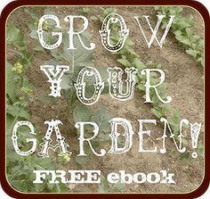 Edible garden basics!