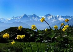 EIGER,MONCH & JUNGFRAU (I've been here in late fall and winter but would love to see it in late spring/early summer)