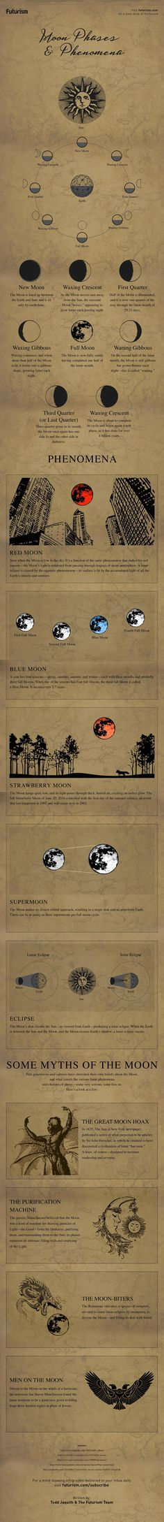 We've stared at it, howled at it, and composed poems to it…we've even landed on it.  Here's a look at the major lunar phases and phenomena— plus a few of the myths it's inspired.  http://futurism.com/images/moon-phases-and-phenomena-infographic/?utm_campaign=coschedule&utm_source=pinterest&utm_medium=Futurism&utm_content=Moon%20Phases%20and%20Phenomena%20%5BINFOGRAPHIC%5D