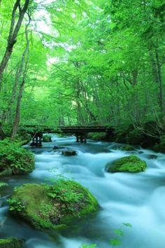 Oirase river (Oirasegawa) in Aomori, Japan Beautiful World, Beautiful Places, Landscape Photography, Nature Photography, Japan Landscape, Green Nature, Science And Nature, Japan Travel, Nature Photos