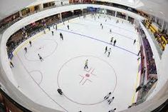 How about ice skating with your family or friends? Find out more at http://www.singaporecitytour.com.sg