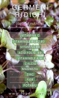 Germenii de ridiche au o concentratie mult mai ridicata de nutrienti decat planta ajunsa la maturitate. Sunt bogati in vitamine si minerale, cele mai semnificative sunt: vitamina C, B1, B3, B6, B9, vit A si K, potasiu, fosfor, calciu, magneziu, zinc, fier. Sunt bogati in clorofila si aminoacizi esentiali. Contin in mod natural estrogeni asemanatori cu cei ai corpului uman si ajuta in echilibrarea hormonala si ameliorarea simptomelor de menopauza. Health Fitness, Growing Up, Fitness, Health And Fitness