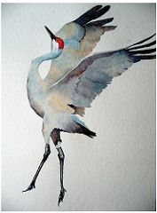 watercolor: sandhill crane | by mokelumne-kid