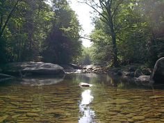 Richwood w va   Richwood, WV : find yourself photo, picture, image (West Virginia) at ...