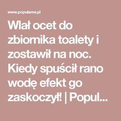 Wlał ocet do zbiornika toalety i zostawił na noc. Kiedy spuścił rano wodę efekt go zaskoczył! | Popularne.pl