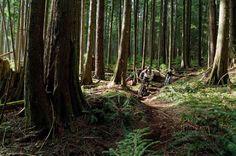 squamish BC  mountain-biking