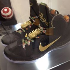 4cd9017dbf8 LeBron James shoes Nike Sweatpants