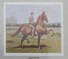 Lexington Junior League Horse Show 1974 Giddy-Up-Go Horse Coat Colors, American Saddlebred, Modern Pictures, Vintage Horse, Horse World, Trail Riding, Horse Breeds, Show Horses, Dressage