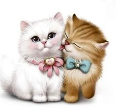 More Pretty Persian Kittens. I Love Cats, Crazy Cats, Cute Cats, Kittens Cutest, Cats And Kittens, Persian Kittens, Kitty Cats, Vintage Cat, Cat Drawing