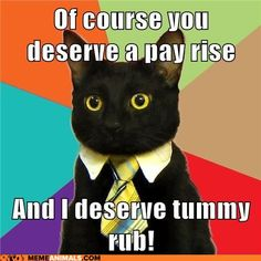 advice animals memes  - Business Cat: I See a Sexual Harassment Lawsuit in his Future