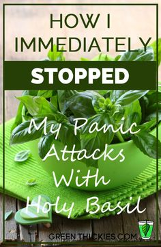 How I immediately Stopped My Panic Attacks With Holy Basil. Not so long ago my anxiety and panic attacks had got to an extremely bad level. Read about how I immediately stopped my anxiety with Holy Basil. I also share how I transitioned off Holy Basil and the other things that worked to heal the rest of my health problems.