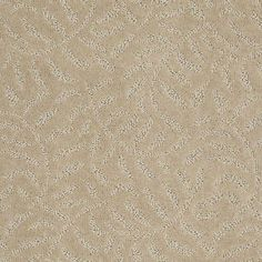 Master bedroom Carpet Oasis - Z6827 - Travertine