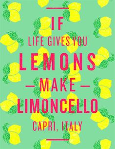 When life gives you lemons, make limoncello. I will drink limoncello in Capri. Great Quotes, Quotes To Live By, Me Quotes, Inspirational Quotes, Famous Quotes, The Words, Motto, Making Limoncello, Limoncello Recipe