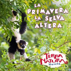 Terra Natura Murcia. Primavera