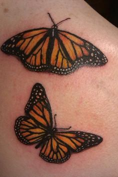 Monarch Butterflies for my compilation for the girls