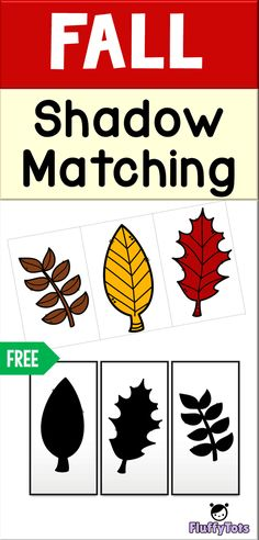 Fall Leaves Shadow Matching : FREE 3 Sets of Shadow to Be Matched