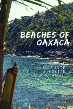 The beaches of Oaxaca are said to be something remarkable. Puerto Escondido, Mazunte, Zipolite, Puerto Angel, Chacahua… But what town on the coast of Oaxaca should you choose – what are the Oaxaca beaches like? #beach #oaxaca #mexico #travel #vacation #visitmexico #vacations