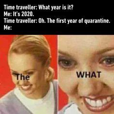 Anti Memes, Dankest Memes, Funny Memes, Jokes, Meme Meme, Wow Meme, Lucky Number 13, What Year Is It, 12 Monkeys
