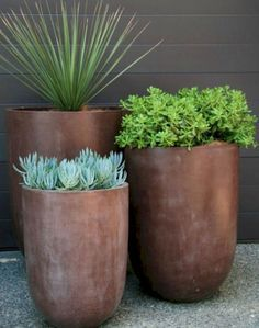 Garden Design 19 Super Chic Outdoor Planters That Will Make your Plants Look Beautiful Than Ever! - Check out this list of gorgeous outdoor planters that come with great capabilities of displaying your plants in a statement-making way. Garden Planters, Planter Pots, Succulents Garden, Front Yard Planters, Garden Troughs, Potted Garden, Front Fence, Succulent Gardening, Succulent Terrarium