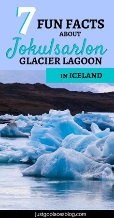 Iceland is not just the Blue Lagoon: find out why you need to visit the Jokulsarlon Glacier Lagoon. A bot will bring you through icebergs and a beautiful landscape (and you might see seals too! This is definitely one of the best things to do in Iceland. Travel With Kids, Family Travel, Iceland Facts, Iceland Glacier, Northern Lights Iceland, Family Holiday Destinations, Iceland Travel, Blue Lagoon, Day Tours