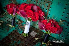 Photo by Annandale Photography. www.annandalephotography.com