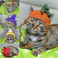 Nurdi Babi Cat Hats Vol. 1 Halloween Edition Cat Hat Crochet Patterns Pet Hat with Permission to Sel Halloween Hats, Halloween Crochet, Chat Crochet, Crochet Hats For Cats, I Love This Yarn, Cat Sweaters, Cat Hat, Pet Costumes, Cat Pattern