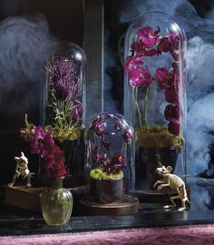 bewitchingly beautiful ideas beautiful and decorating ideas - Great Halloween Decoration Ideas