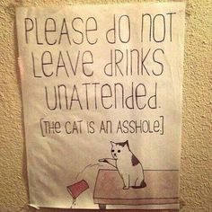 Yep. He will drink out of your glass.  Rude.