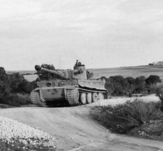 Tiger I tropical version with the 11th SpzAbt 501 in Tunisia