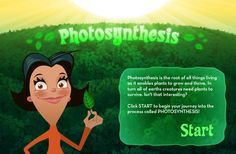 Interactive Photosynthesis Activity