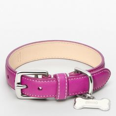 The Leather Collar With Bone Charm from Coach… for the spoiled princess who hasn't even come home yet!