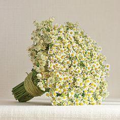 Fresh Bridal Bouquets   Sweet Simplicity Bouquet   SouthernLiving.com - budget friendly