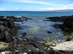 Holoholokai Beach - Tidal Pool - Kamuela, Kohala Coast, Big Island, Hawaii