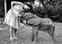 Daphne and an orphaned elephant in the trust's early days. Copyright The David Sheldrick Wildlife Trust 2013.