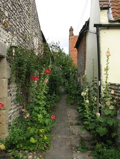 Cley-next-the-sea, Norfolk, England