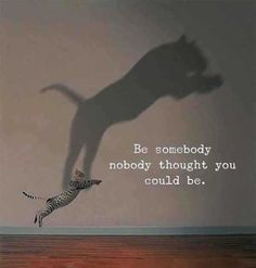 Be somebody nobody thought you could be - Motivation - Mindset quotes quotes deep quotes funny quotes inspirational quotes positive Life Quotes To Live By Inspirational, Positive Vibes Quotes, New Quotes, Wisdom Quotes, Words Quotes, Short Quotes, Positive Life, Famous Quotes, Be You Quotes
