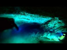 Bucket list - Swimming through a halocline - the blurry wave separating fresh and salt water - optical illusion BBC Planet Earth