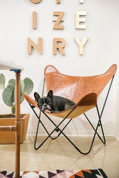 When you are moving into a new home or you are designing your favorite space, you need at least one iconic chair to add to your dreamy interior. We picked 6 gorgeous chairs that will never go out of style and they will make your home looking like one from a cool magazine: 1. Palermo …
