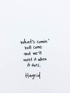 What's comin', will come. And we'll meet it when it does. - Hagrid We all need to have this attitude with the future.....There's no sense in worrying about stuff.