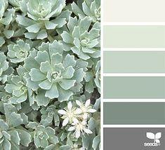 Farbe Natur | Design Samen | Bloglovin '  #bloglovin #design #farbe #natur #samen