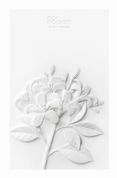 Wirin Chaowanais a paper craft artist and desig …