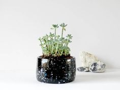 Hey, I found this really awesome Etsy listing at https://www.etsy.com/uk/listing/544777838/small-desk-planter-galaxy-planter