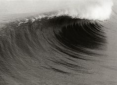 Dreams of seeing this wave