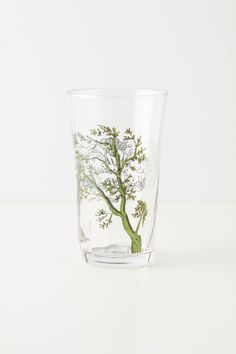 Anthropologie Menagerie Juice glass by Molly Hatch Molly Hatch, Juice Packaging, Kitchenware, Tableware, Jelly Jars, Ink Pen Drawings, Dinner Sets, Kitchen Items, Kitchen Dining