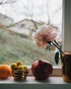 enSoie Still Lifes by Eleonore Meier